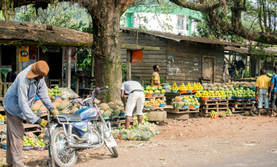 The fresh produce is beautiful and abundant...being sold along the road everywhere.